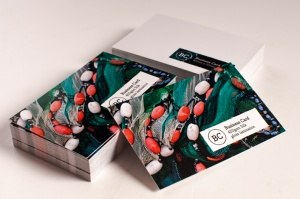 450g  Laminated Business Cards