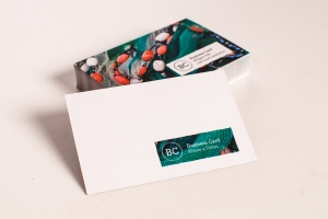 450g  non laminated Business Cards